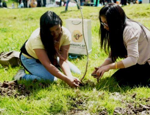 Educación en Sostenibilidad Ambiental y Educación Alimentaria y Nutricional
