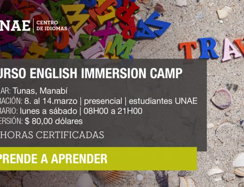Curso English Immersion Camp