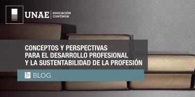 Conceptos y perspectivas para el desarrollo profesional y la sustentabilidad de la profesión