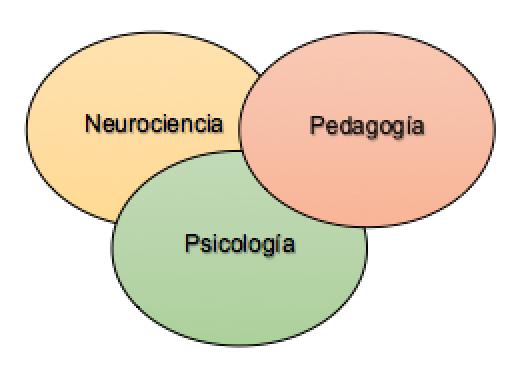 Imagen blog neurociencia, pedagogía y psicología