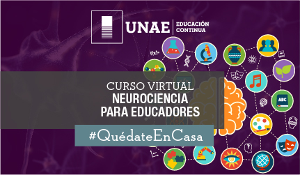 Curso virtual: Neurociencia para educadores