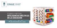 Curso virtual: Inteligencias múltiples en la educación
