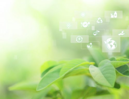 Un proyecto de investigación sobre educación para la sostenibilidad en la UNAE